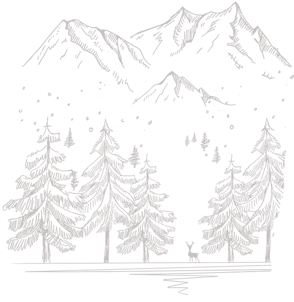 Appartements Grabenbauer - Berge, Bäume